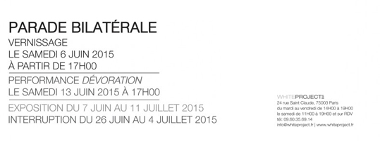 PARADE BILATERALE – Exposition personnelle – Galerie White Project, Paris